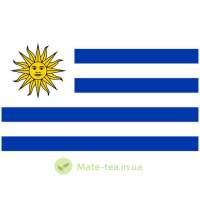 Уругвайський мате